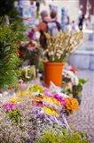 Spain, Cadiz, Plaza de Topete Flower Market