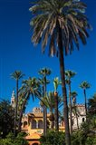 The Alcazar Gardens, Seville, Spain
