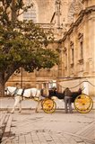 Spain, Seville, Horse carriage, Plaza del Triunfo