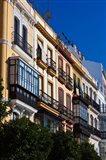 Spain, Seville, Avenida Constitucion Avenue