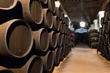 Spain, Bodegas Gonzalez Byass, Winery Casks