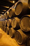 Spain, Bodegas Gonzalez Byass, Winery Casks