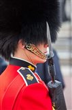 Scots Guard, Buckingham Palace, London, England