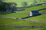 Farmland, Stone Walls and Buildings, near Malham, Yorkshire Dales, North Yorkshire, England