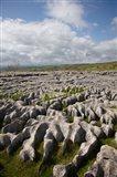 Limestone Pavement, Malham Cove, Yorkshire Dales National Park, North Yorkshire, England