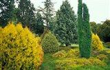 Exbury Gardens, Rothschild Estate, New Forest, Hampshire, England