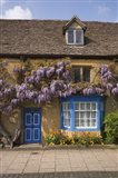 Wisteria Covered Cottage, Broadway, Cotswolds, England