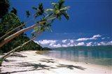 Oceania, Fiji Island