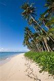 Lavena Beach, Fiji