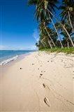 Lavena Beach in Taveuni, Fiji
