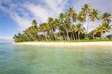 Lavena Beach on the Island of Fiji
