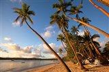 Beach at Shangri-la Fijian Resort and Spa, Fiji