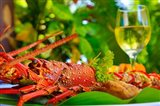 Cuisine, Lobster, Fiji