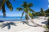 Beach, Waitatavi Bay in Vanua Levu, Fiji