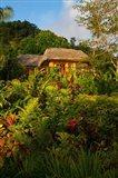 Lush Gardens, Matangi Private Island Resort, Fiji