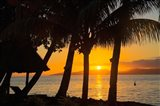 Sunset through Palms, Taveuni, Vanua Levu in Background, Fiji