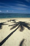 Shadow of Palm Trees on Beach, Coral Coast, Fiji