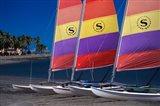 Yachts, Sheraton Royal Denarau Resort, Fiji