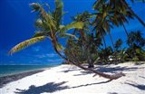 Tambua Sands,Fiji
