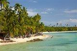 Beach, palm trees and beachfront bures, Plantation Island Resort, Malolo Lailai Island, Mamanuca Islands, Fiji