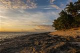 Late afternoon light on a beach on Beachcomber island, Mamanucas Islands, Fiji, South Pacific