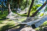 Hammock on the beach, Nacula island, Yasawa, Fiji, South Pacific