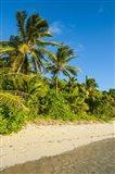 Oarsman Bay, Fiji