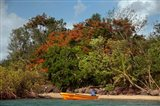 Christmas Tree and Orange Skiff, Turtle Island, Yasawa Islands, Fiji