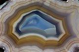 Mexican Banded Agate Quartzsite, Arizona 2