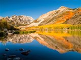 California, Eastern Sierra, Fall Color Reflected In North Lake