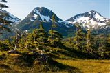 Mount Eccles Near Cordova, Alaska
