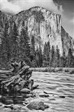 California, Yosemite, El Capitan (BW)