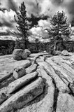 Granite Outcropping At Yosemite NP (BW)