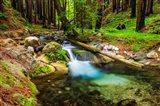 Hare Creek