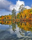Autumn Scene Of Upper Togue Pond, Maine