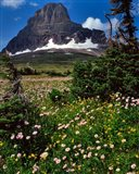 Clements Mountain, Glacier National Park, Montana