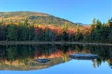 Lily Pond, White Mountain Forest, New Hampshire