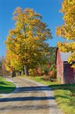 Road beside Classic Farm in Autumn, New Hampshire