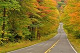 Roadway through White Mountain National Forest, New Hampshire