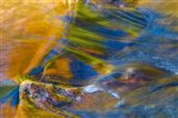 Fall Reflections in Stream, White Mountain National Forest, New Hampshire