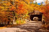 Autumn at Albany Covered Bridge, New Hampshire