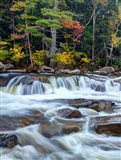 Lower Swift River Falls, White Mountains, New Hampshire
