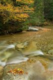 New Hampshire; Lincoln; Franconia Notch