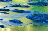 Summer Reflections in the Waters of the Lamprey River, New Hampshire