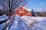 Pony and Barn near the Lamprey River in Winter, New Hampshire