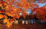 Fall Morning in a Portsmouth Cemetary, New Hampshire