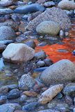 Fall Colors Reflect in Saco River, New Hampshire