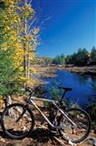 Mountain Bike at Beaver Pond in Pawtuckaway State Park, New Hampshire
