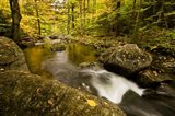 Autumn stream in Grafton, New Hampshire