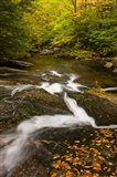Autumn stream, Grafton, New Hampshire